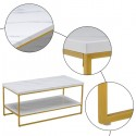 (106 x 50 x 48cm) Simple Double-layer Golden Iron Pipe Marble PVC Coffee Table Rectangular